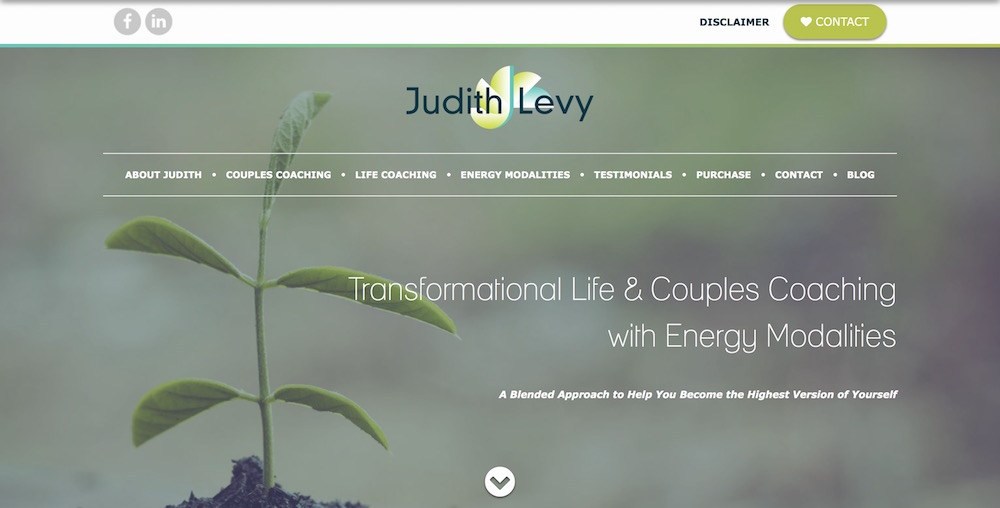 Judith Levy Coaching Website