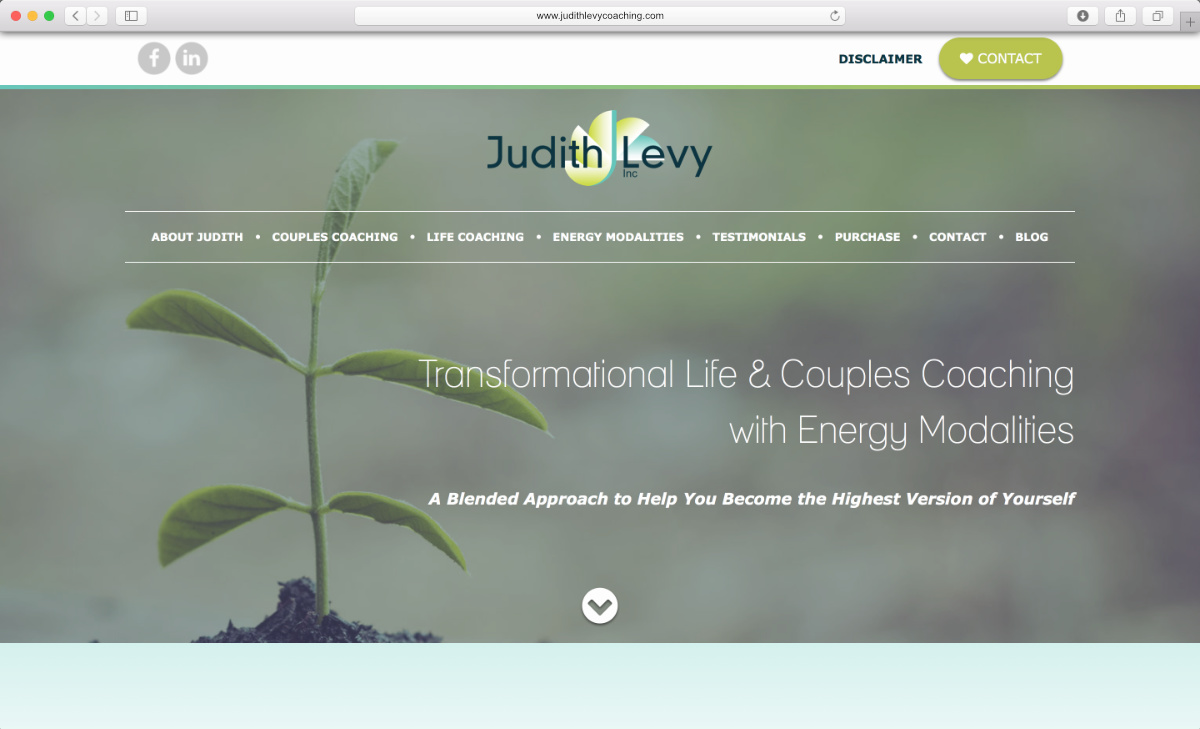 Judith Levy Coaching Website Preview